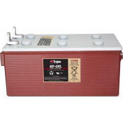 Batterie de TROIE 8D-GEL