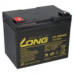 Batterie AGM LONG U1-36NE...